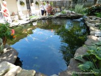 Large backyard ponds Photo - 1 | Design your home