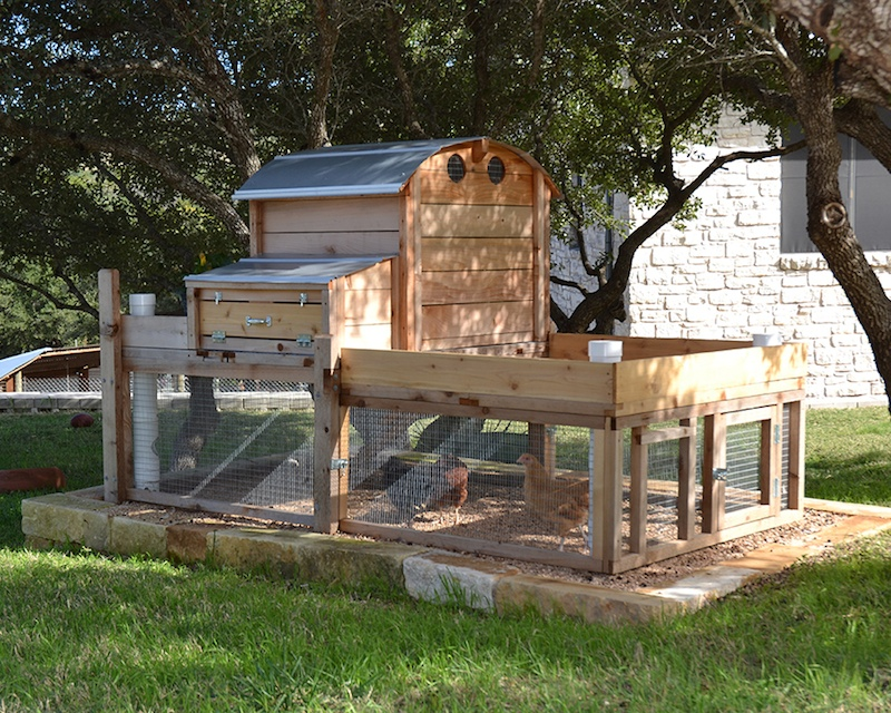Best Backyard Chicken Coop  Large And Beautiful Photos