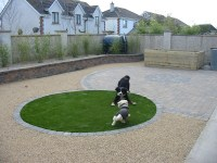 Dog friendly backyard landscaping - large and beautiful ...