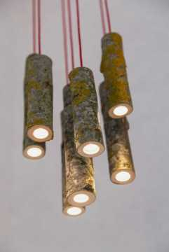 Lamps For A Touch Of Nature0017