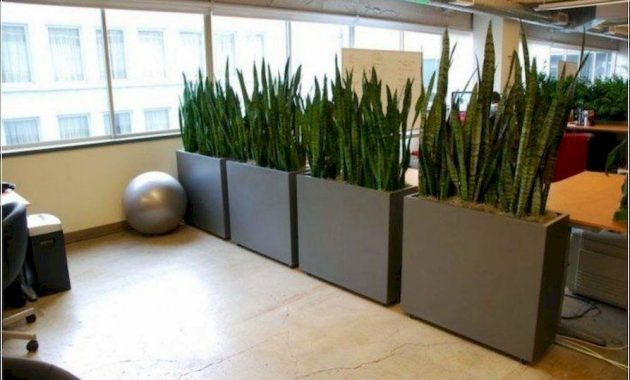 Planter Screens As Decor And Space Dividers0014