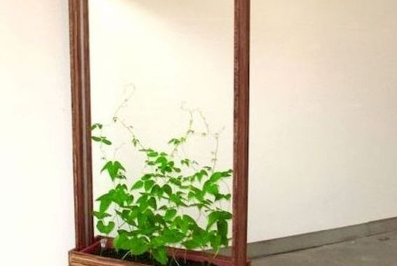 Planter Screens As Decor And Space Dividers0017