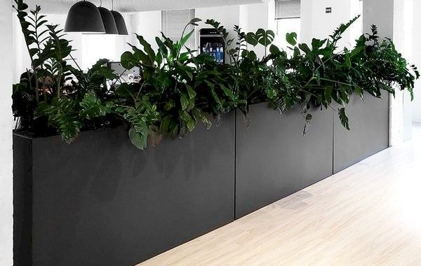 Planter Screens As Decor And Space Dividers0020