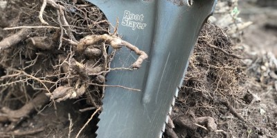 Slaying Roots & Taking Names – The Root Slayer Shovel