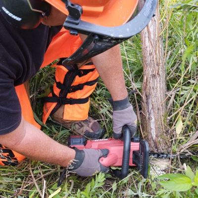 Dynamic Duo – Skil PWR CORE 20 Chainsaw and PWR CORE 40 Brushless Polesaw