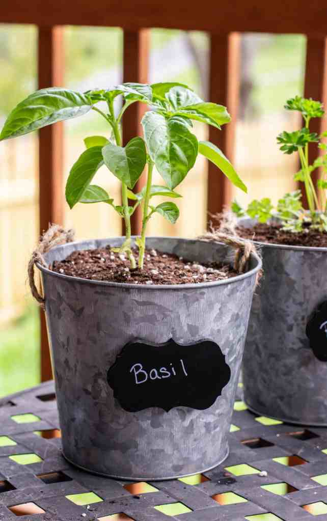 Easy DIY Herb Garden Planter Idea - If you want to try your hand at this DIY Herb Garden Planter, you will be pleased with how easy it is. Grow your own herbs and make your meals taste amazing! #planter #herb #herbgarden #diy #easy #homefreshideas