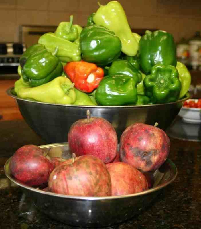 harvest_organic-fruit-and-vegetables