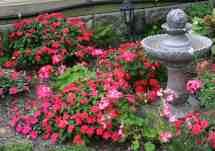 Easy Flower Garden Designs Ideas