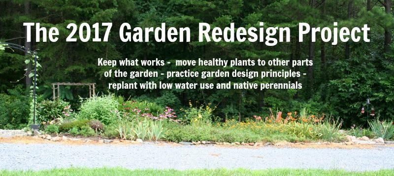 garden redesign project