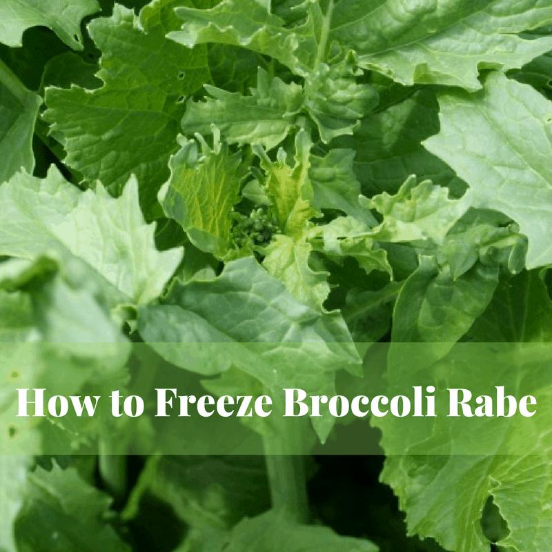 how to freeze broccoli rabe