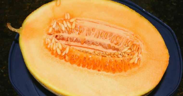 Saving Cantaloupe Seeds