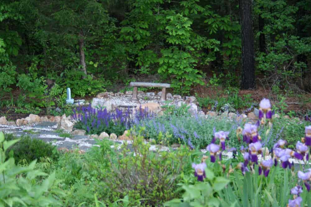 garden bench picture