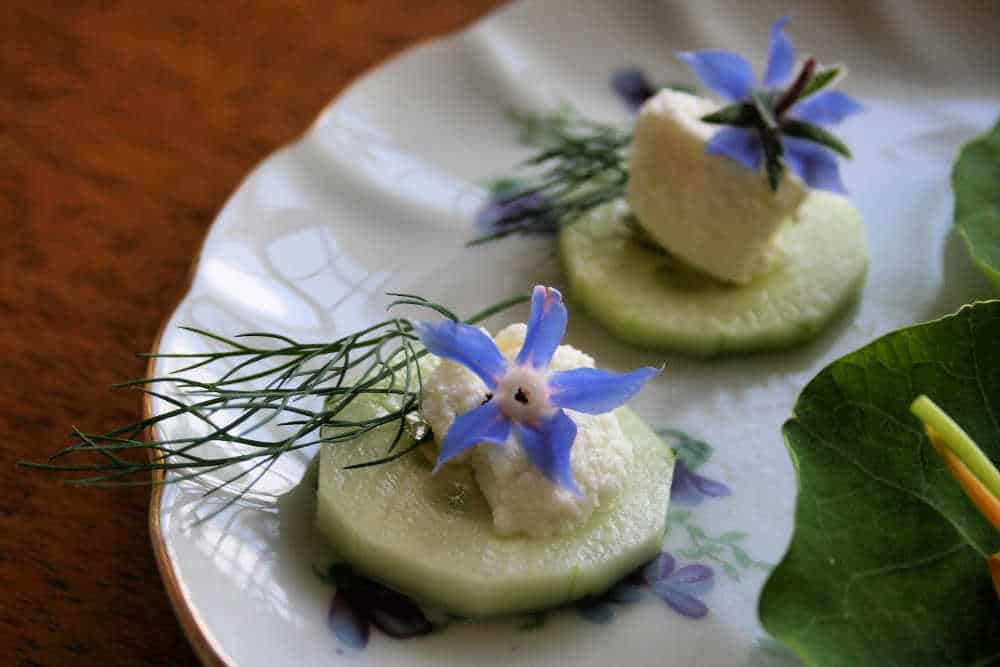 picture of borage flowers used in recipe