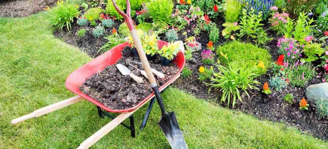 3 Simple Garden Design Ideas Anyone Can Try