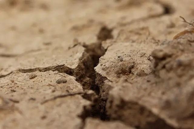 soil type clay