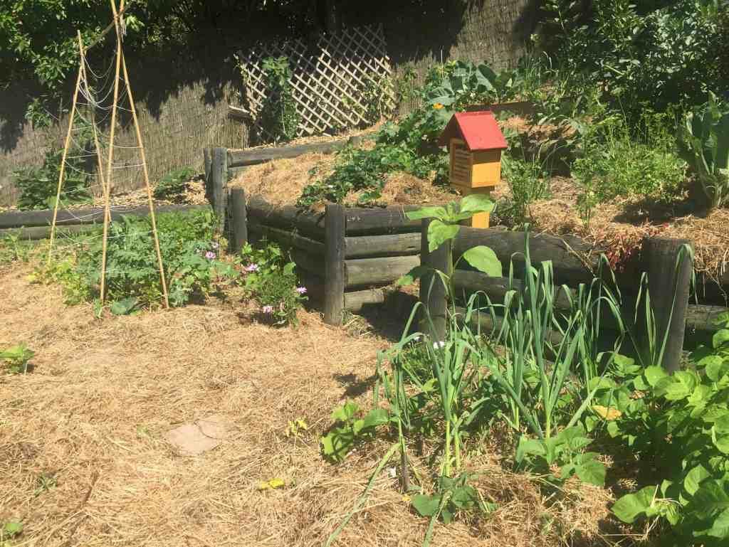deep mulch gardening, deep mulching- the fuss free gardening style - home grown happiness, Design ideen