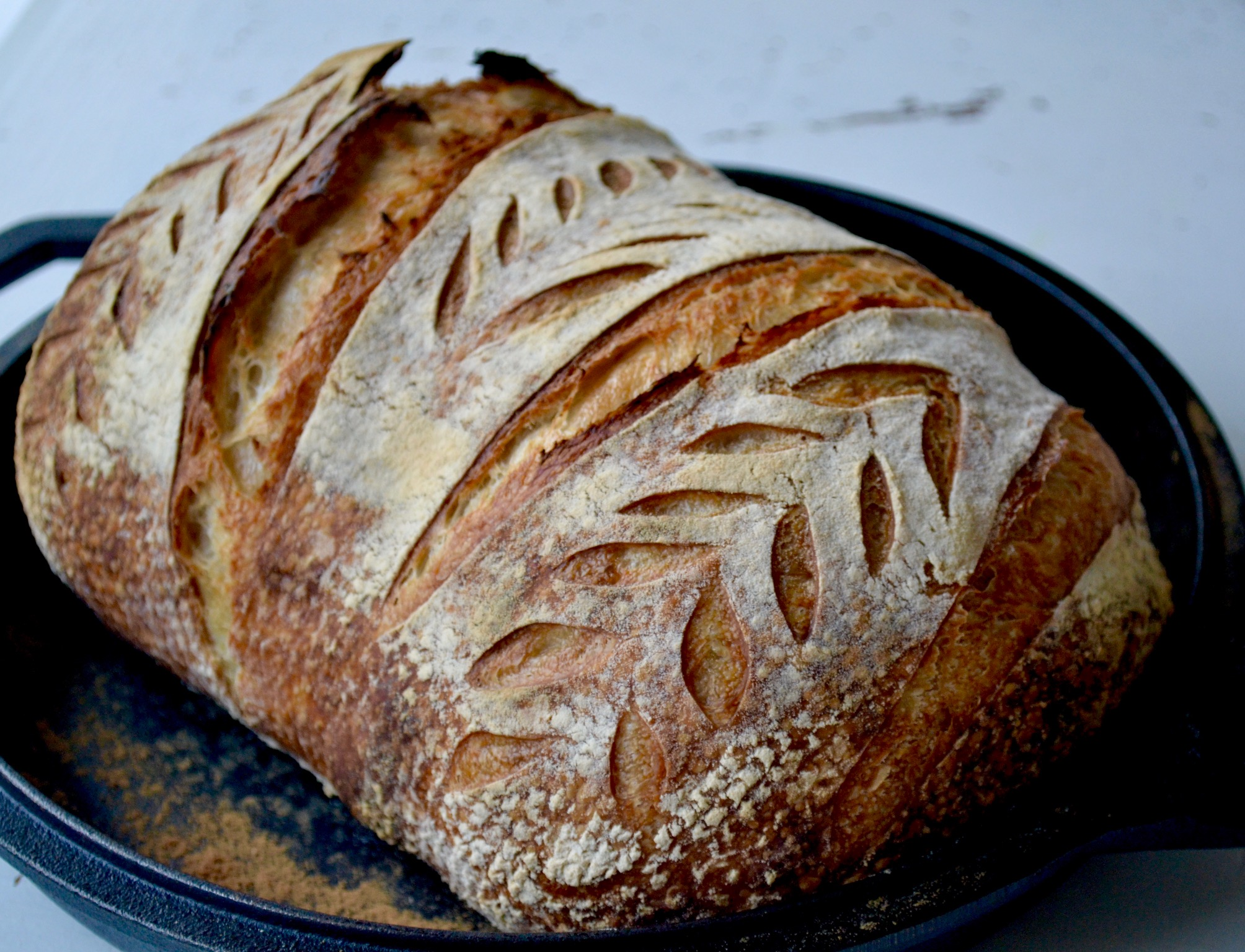 Easy no knead sourdough