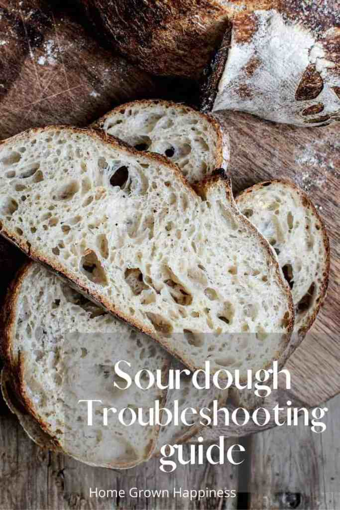 Sourdough Bread Troubleshooting Guide