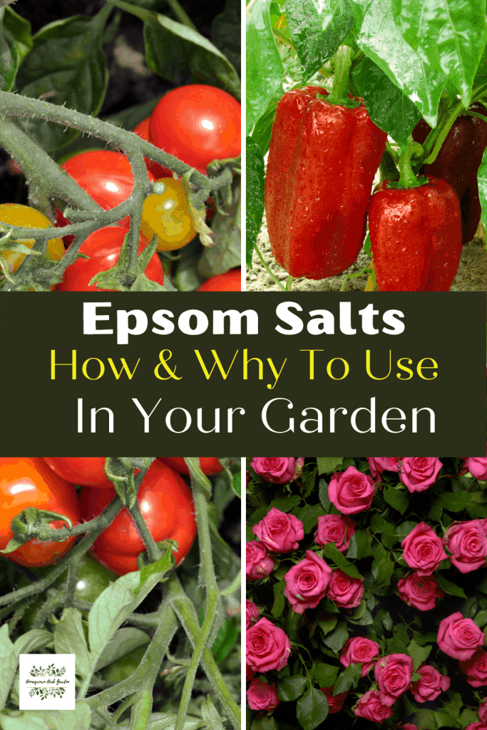 Epsom salts pros and cons