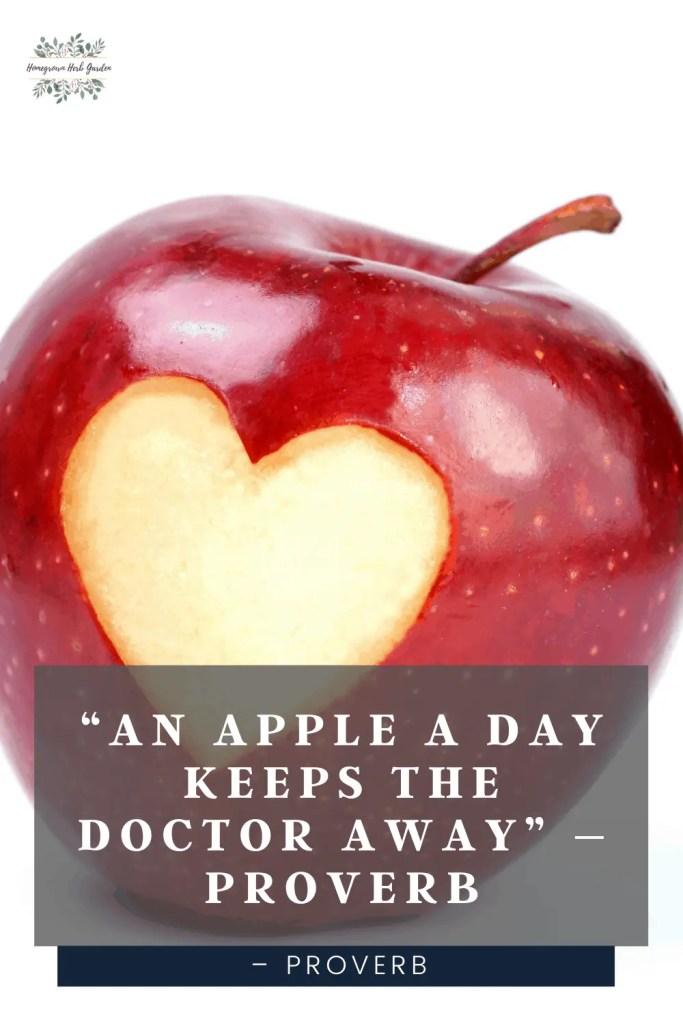 healthy proverb