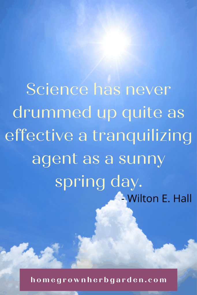 Science has never drummed up quite as effective a tranquilizing agent as a sunny spring day. Wilton E. Hall