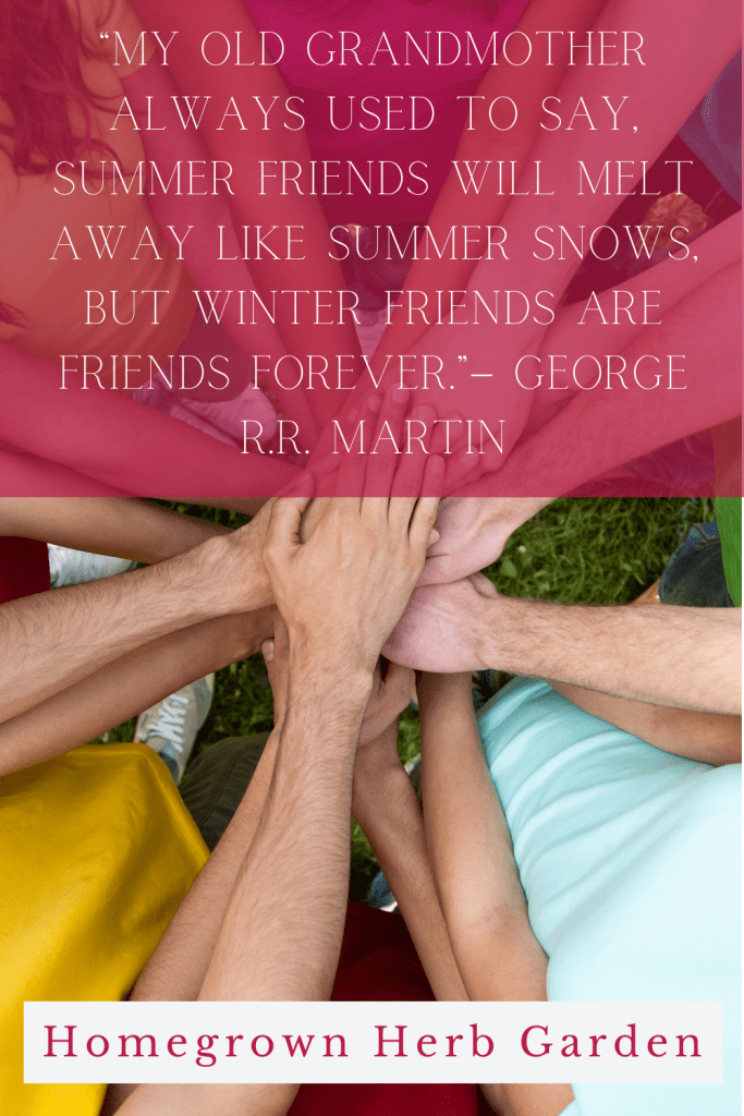 """""""My old grandmother always used to say, Summer friends will melt away like summer snows, but winter friends are friends forever."""" – George R.R. Martin"""