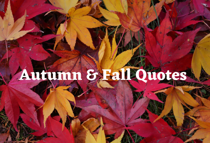 autumn and fall quotes