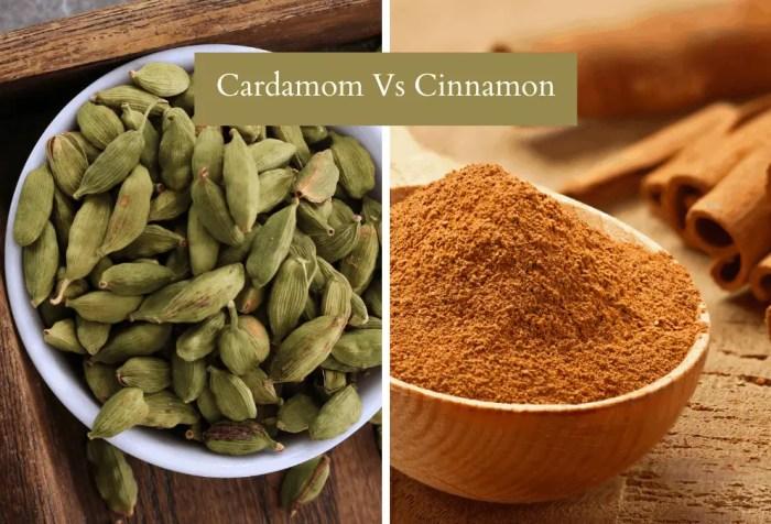 cardamom vs cinnamon