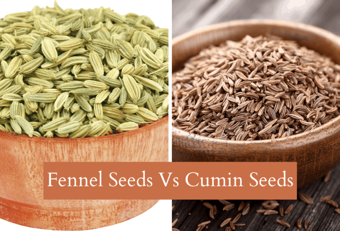 fennel seeds are not cumin seeds