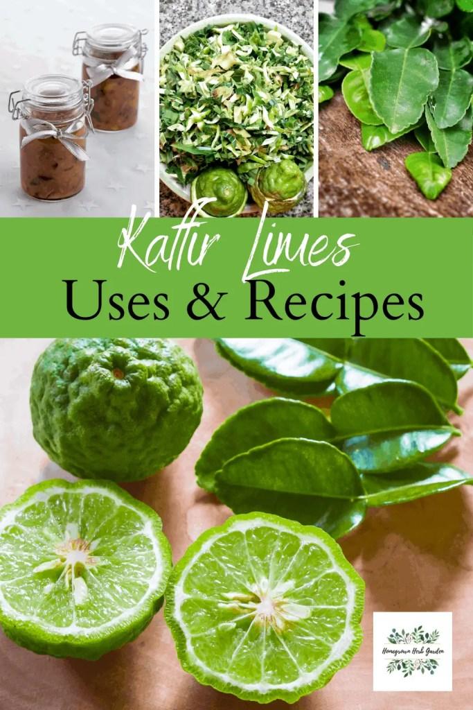 uses for kaffir limes and kaffir leaves