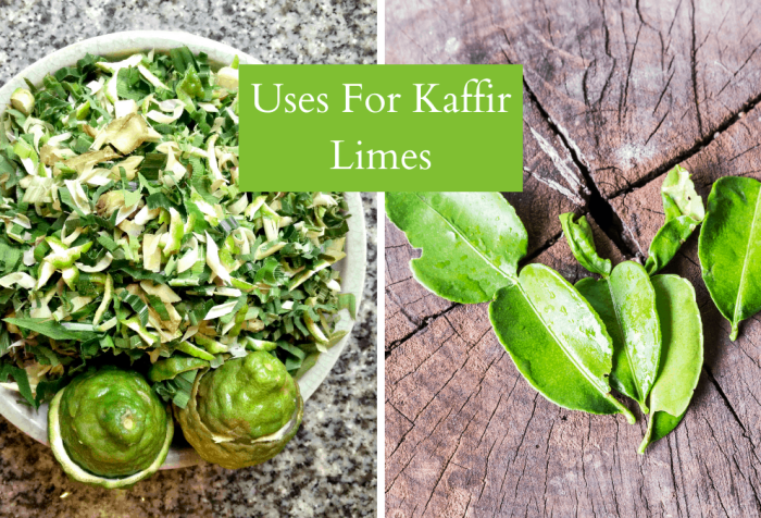uses for kaffir limes and leaves