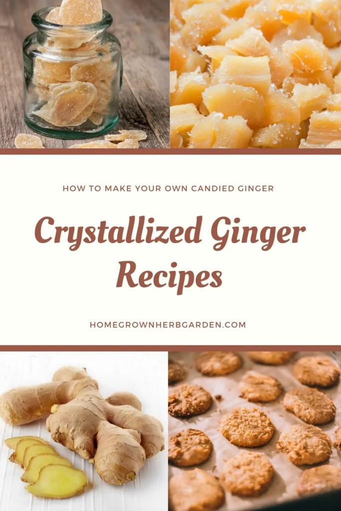 crystallized ginger recipes