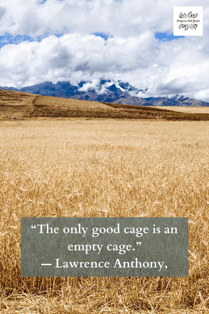 """The only good cage is an empty cage."" ― Lawrence Anthony,"