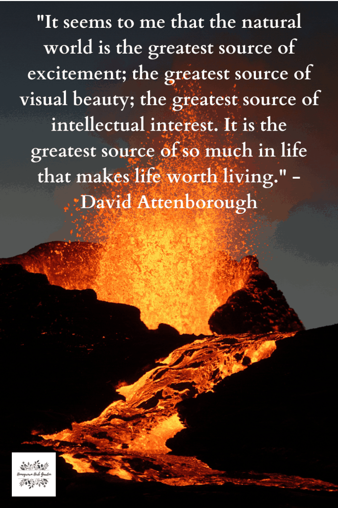 """It seems to me that the natural world is the greatest source of excitement; the greatest source of visual beauty; the greatest source of intellectual interest. It is the greatest source of so much in life that makes life worth living."" - Sir David Attenborough"