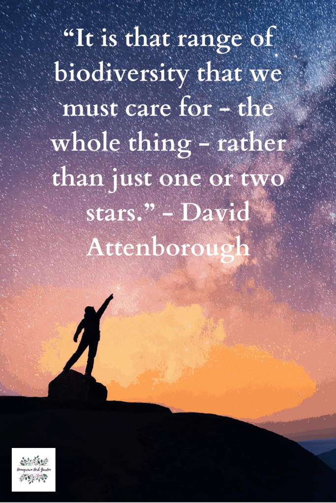 """It is that range of biodiversity that we must care for - the whole thing - rather than just one or two stars."" - David Attenborough"