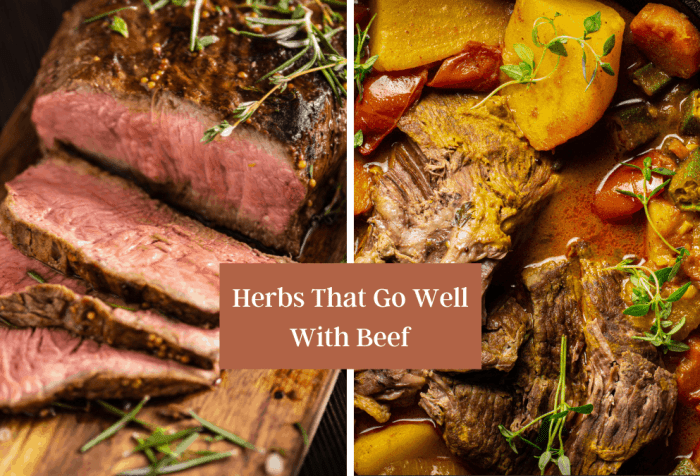 herbs that go well with beef