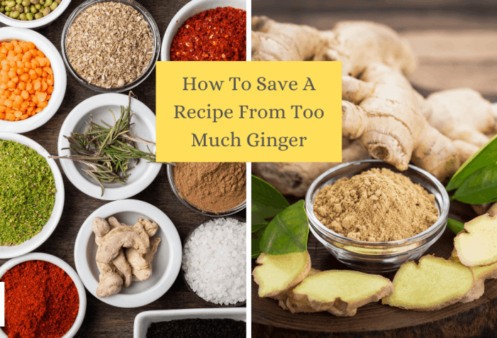 how to save a recipe from too much ginger