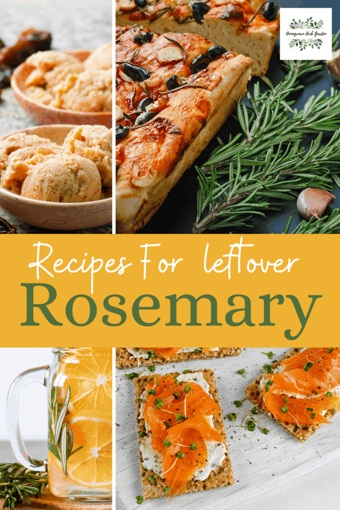 too much rosemary ideas and recipes