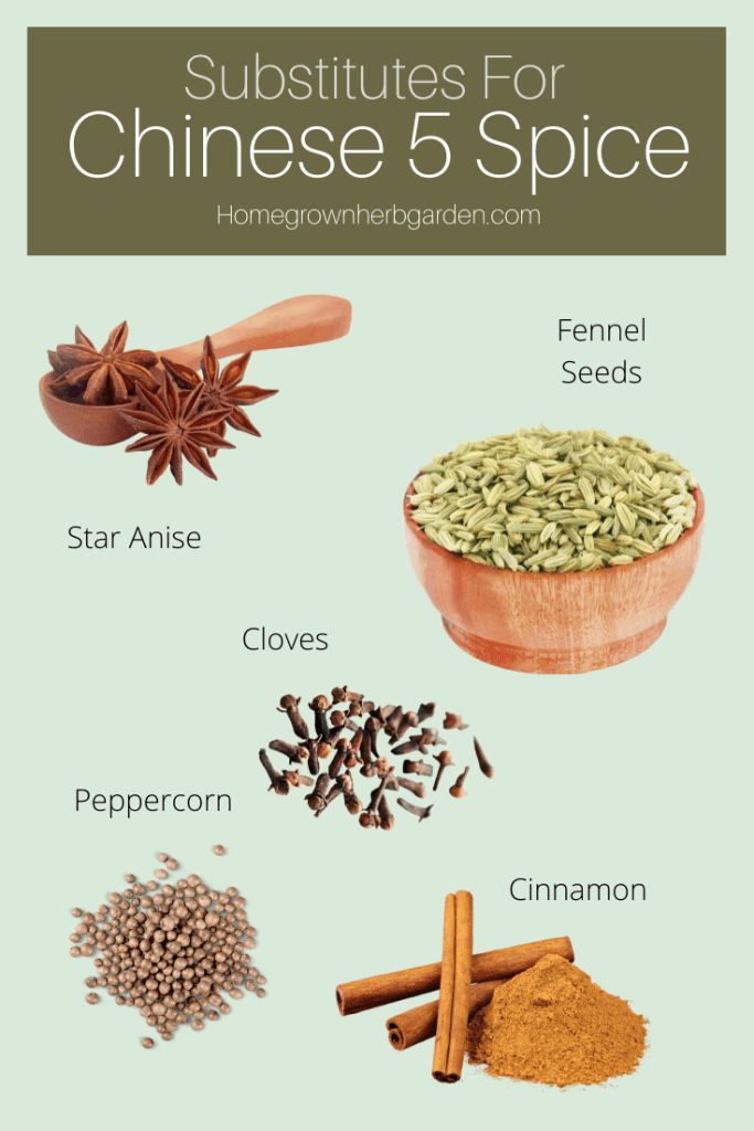 substitutes for Chinese 5 spice