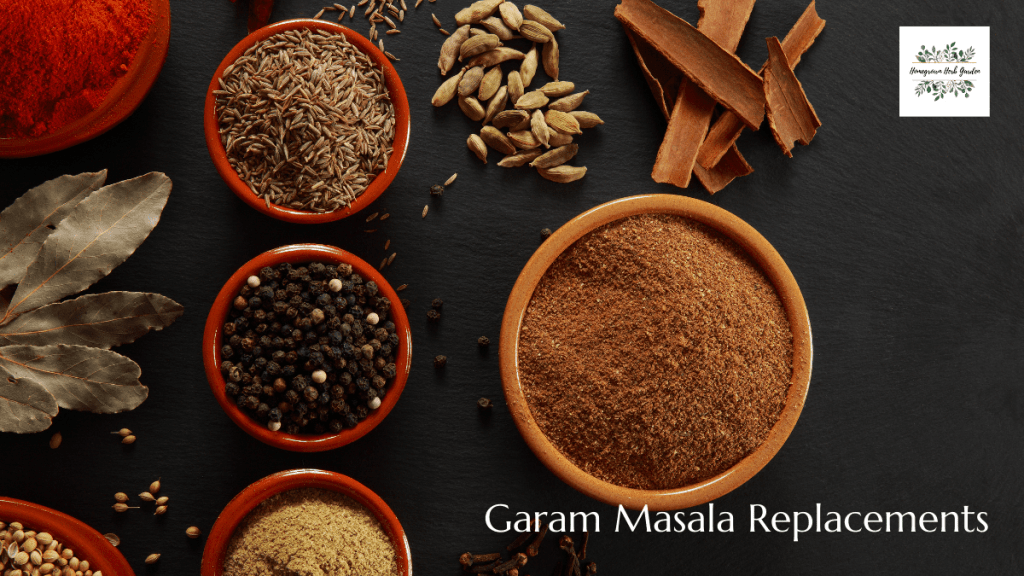 Garam masala replacements, alternatives and substitutes
