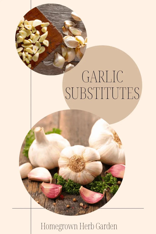 fresh garlic replacements