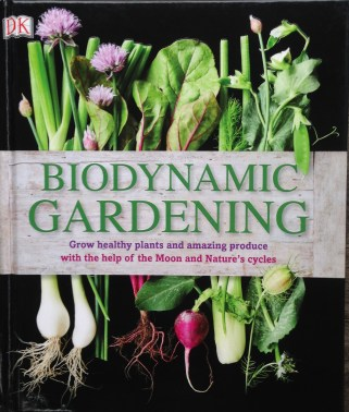Featuring our allotment garden (and me!) Photography by Will. Published by DK March 2015