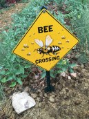 jannine's bee crossing