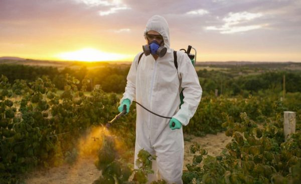 Most Harmful Pesticides