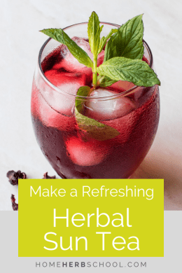 There are many refreshing herbs to use for making an herbal sun tea. Learn how easy it is and how delicious herbalism can be. #HerbalSunTea #Herbalism #HerbalMedicine
