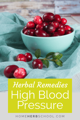 Hawthorn, garlic and yarrow are some of the best herbal remedies for high blood pressure. These herbs have been well researched in herbalism as well as the scientific community. #Herbalism #HerbalMedicine #HerbsHighBloodPressure
