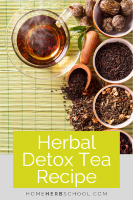 This herbal detox tea recipe includes some of the most delicious herbal medicine ingredients. This herbalism remedy is quite effective. #Herbalism #HerbalMedicine #DetoxTea
