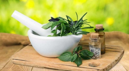 Make Herbal Medicine Course