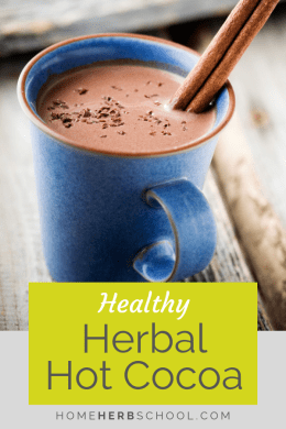 You will be surprised by this healthy herbal hot cocoa and its delicious taste as well as its many health benefits. Learn about cayenne, cinnamon and cardamom. #Herbalism #HerbalMedicine #HerbalCocoa