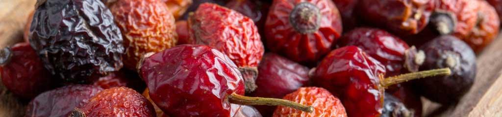 Wild Medicinal berries